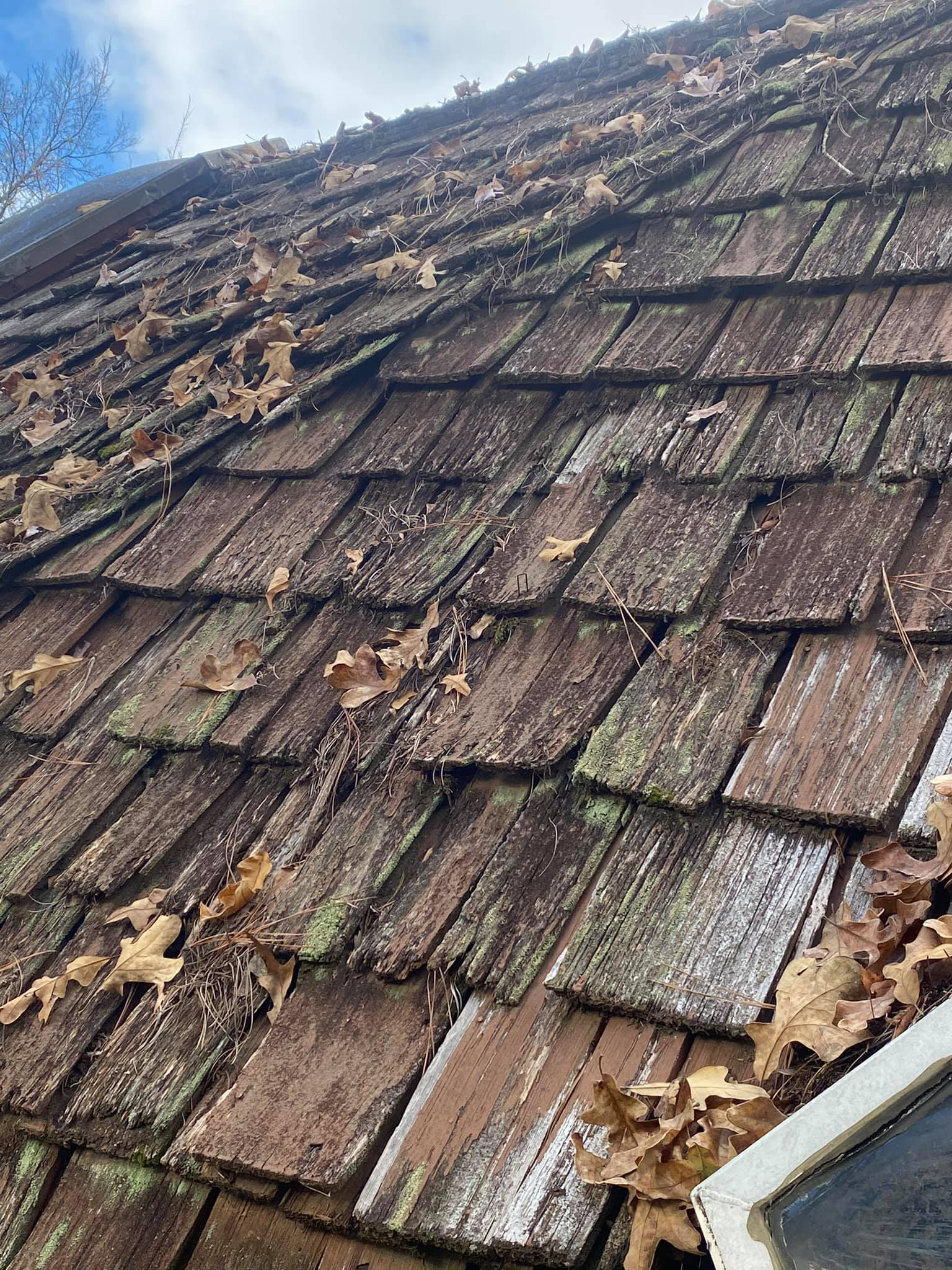 42 year old wood shingles