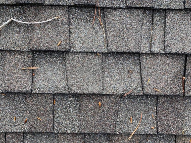 50 year shingle