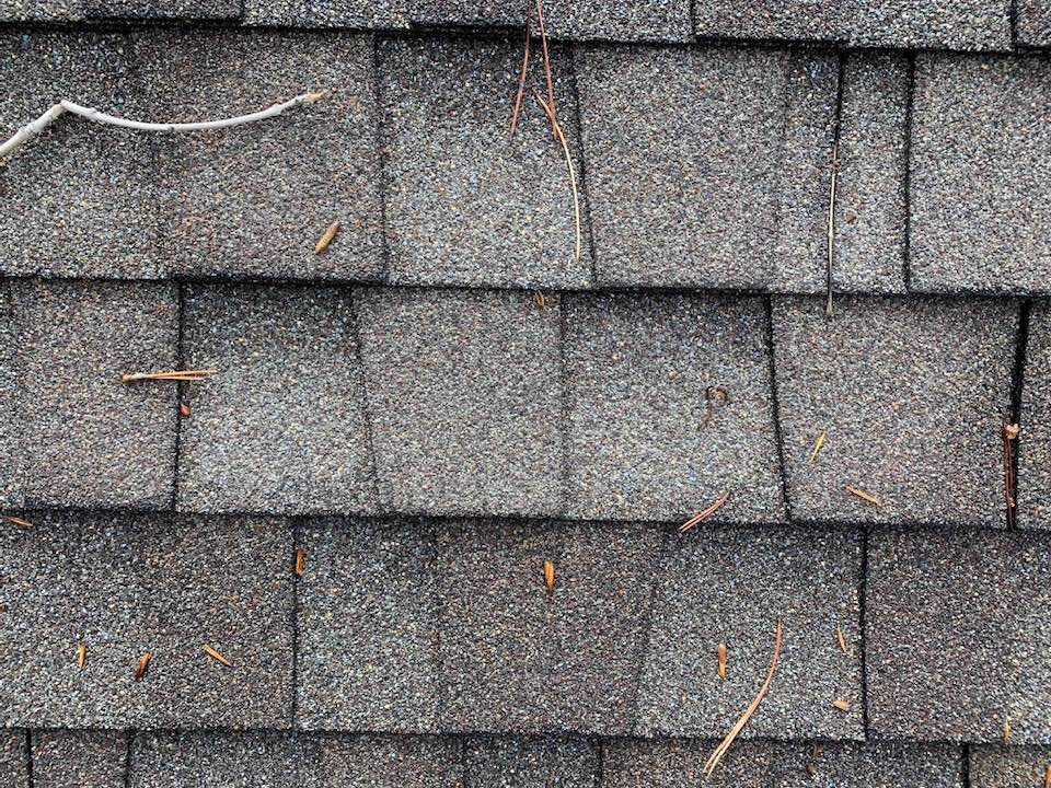 The Truth About 50-year Shingles